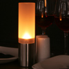 Stainless Steel & Frosted Glass Table Lamp