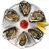 Oyster Plate 6 Hole 25.5cm