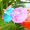Paper Cocktail Parasols